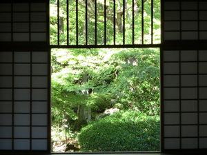 CIMG1062.JPGのサムネイル画像