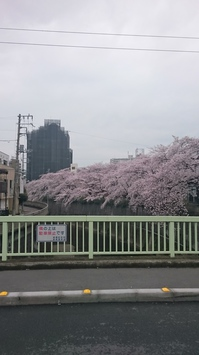 DSC_0558.JPGのサムネイル画像