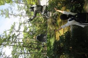 IMG_0402.JPGのサムネイル画像