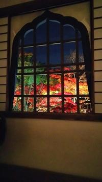 DSC_1322.JPGのサムネイル画像